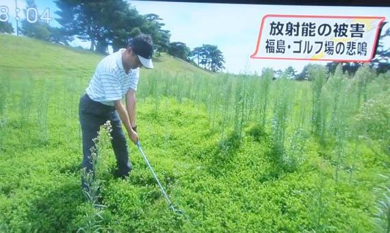 7 Fukushima Golf Courses sue TEPCO for lost revenue
