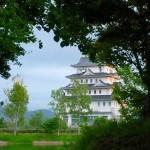 Tokugawa Castle