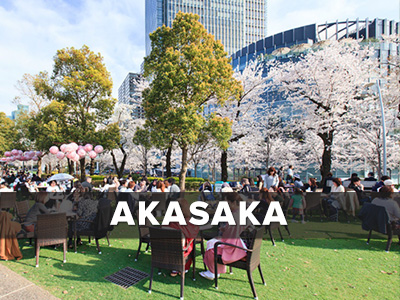 Akasaka Real Estate