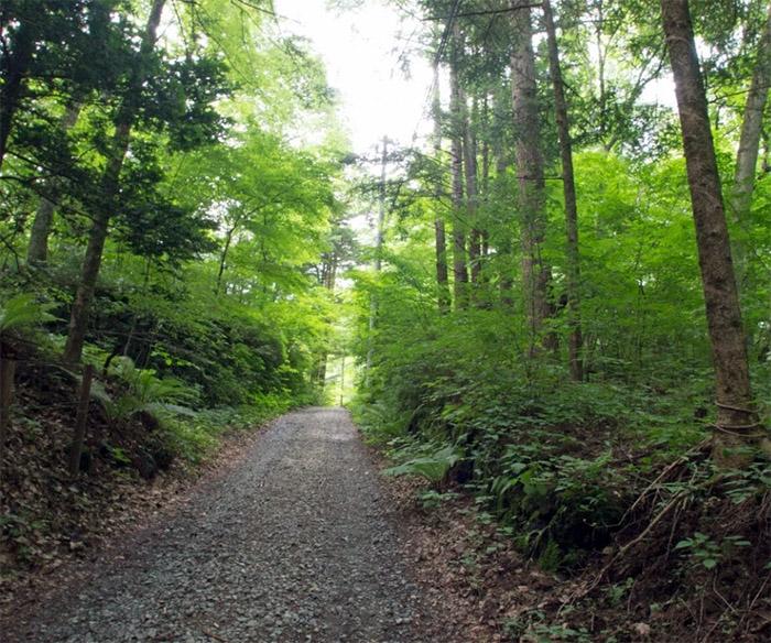 Karuizawa Land sm1