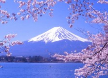 Foreign visitors to Mt. Fuji area down 77%